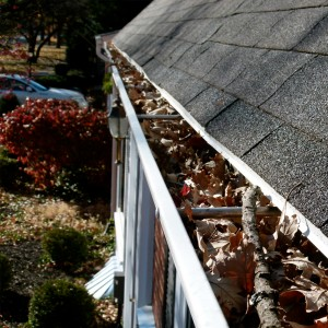 Professional Gutter Cleaning in Dallas TX